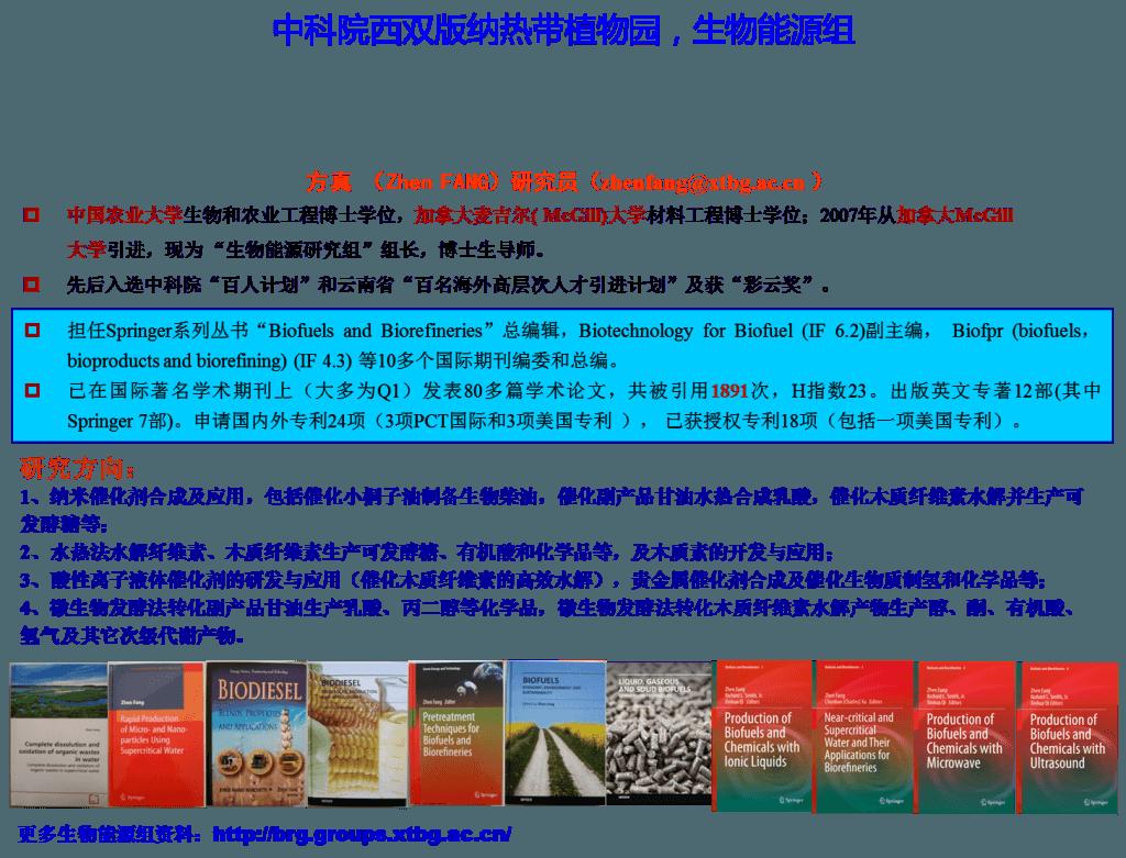 biomass group -CHinese