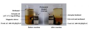 新型碳基磁性固体酸催化剂用于高酸值油脂转化合成生物柴油